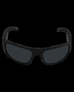 Smart Sunglasses Audio